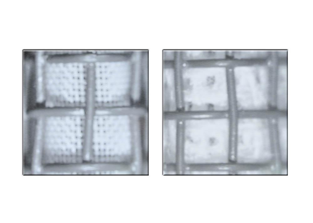 01 C - Microscopio