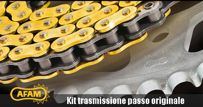 Leggerezza e prestazioni? Solo con il Kit trasmissione AFAM passo 520!